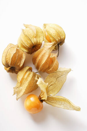 calyxes: Physalis with and without calyxes