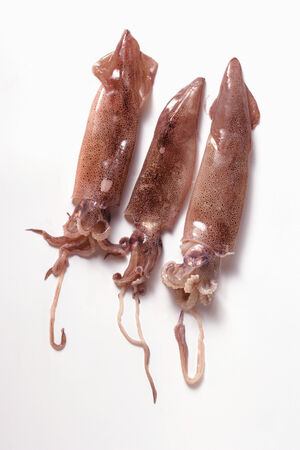 calamares: Three squid
