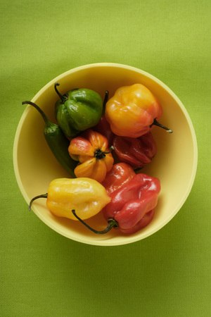 yellowish green: Various chili peppers in yellow bowl LANG_EVOIMAGES