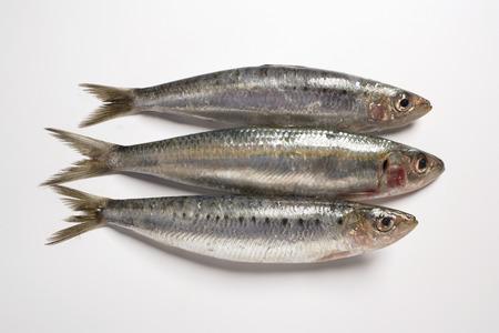 sardinas: Tres sardinas
