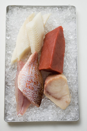 tunafish: An assortment of fish fillets on ice