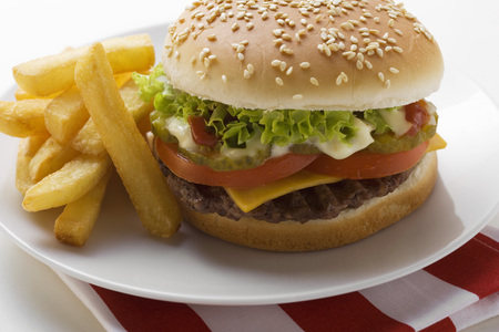 all american burger: Cheeseburger and Fries on a Plate