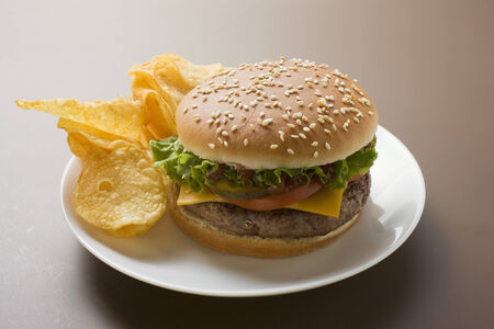 crisps: Cheeseburger with potato crisps LANG_EVOIMAGES