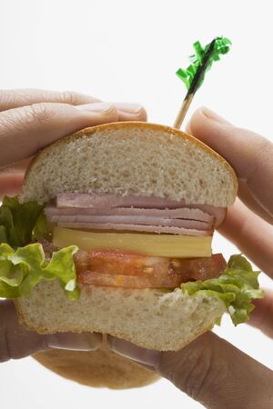 hero sandwich: Hands holding ham and cheese sub sandwich LANG_EVOIMAGES