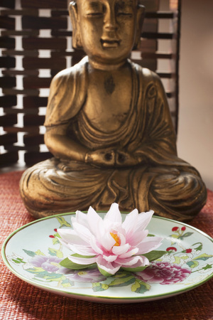 nymphaea odorata: Asian plate with water lily in front of Buddha