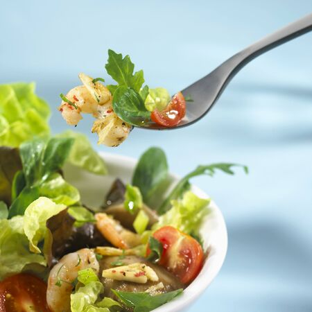 lean out: Salad leaves with shrimps on fork and in dish LANG_EVOIMAGES