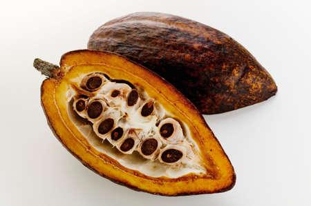 halved  half: Cacao pod, halved