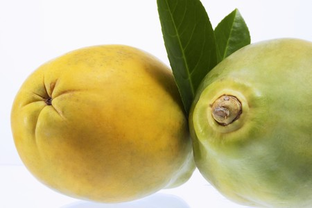 quinces: Two quinces with leaves LANG_EVOIMAGES