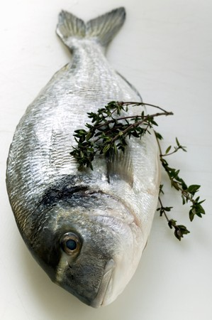 sea bream: Fresh sea bream with thyme LANG_EVOIMAGES