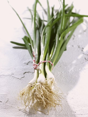 spring onions: Spring onions, in a bunch