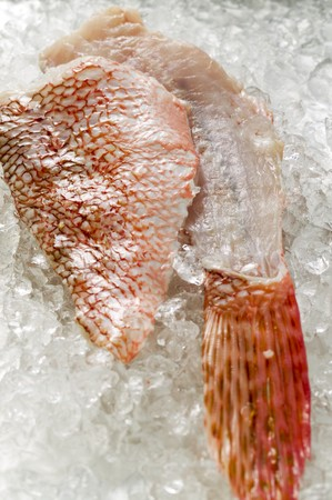 fish fillet: Scorpion fish fillet and fin on ice LANG_EVOIMAGES