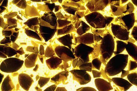 backlit: Candied pumpkin seeds, backlit (close-up)