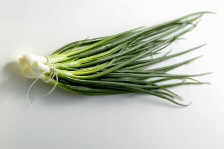 spring onions: Bunch of Asian spring onions LANG_EVOIMAGES