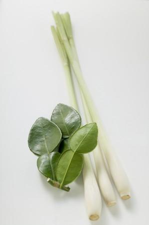 lemon grass: Lemon leaves and lemon grass LANG_EVOIMAGES