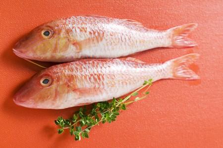 goatfish: Fresh red mullet on red background LANG_EVOIMAGES
