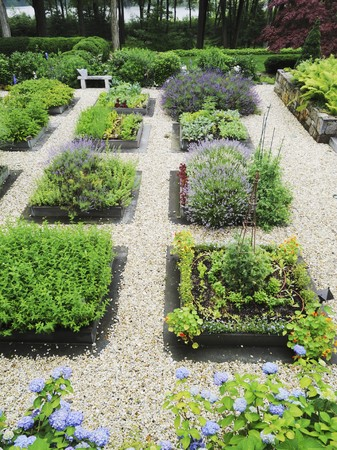 alfresco: Various beds on herbs in a garden separated by gravel paths LANG_EVOIMAGES