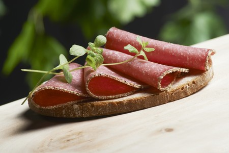 A slice of bread topped with pepper salami and fresh oregano on a wooden table in a garden