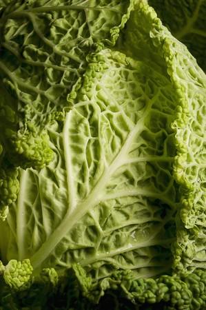 savoy cabbage: Savoy cabbage (detail)