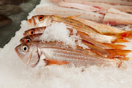mullet: Fresh red mullet on ice