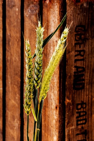 secale: Ears of grain in front of a wooden crate LANG_EVOIMAGES