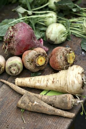 root vegetables: Varie verdure a radice e cavolo rapa su un tavolo di legno LANG_EVOIMAGES