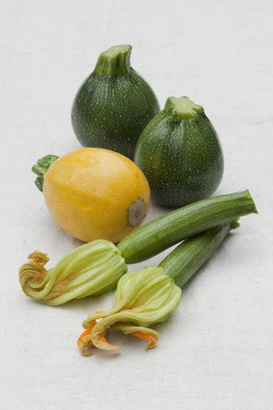 cocozelle: Round green and yellow courgettes and long courgettes with flowers LANG_EVOIMAGES
