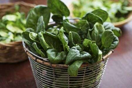 sieve: Fresh young spinach in sieve LANG_EVOIMAGES