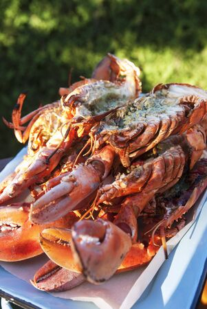 broiling: Grilled lobster