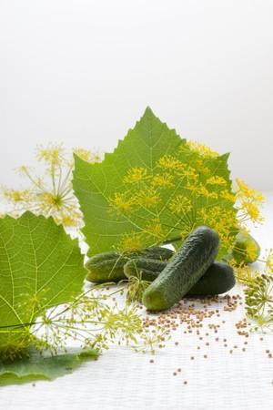 hojas parra: Pepinillos frescos, hojas de vid, flores de eneldo y semillas de mostaza LANG_EVOIMAGES