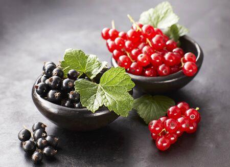 black currants: Black currants and redcurrants LANG_EVOIMAGES