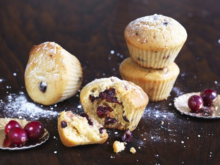 vaccinium macrocarpon: Cranberry muffins dusted with icing sugar