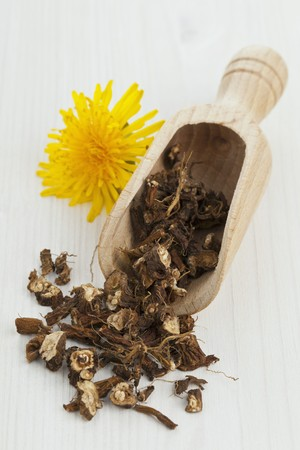 teas: Dried dandelion root in a wooden scoop for dandelion tea LANG_EVOIMAGES