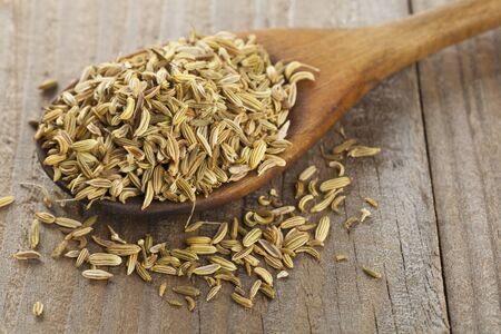 fennel seeds: Dried fennel seeds on a wooden spoon