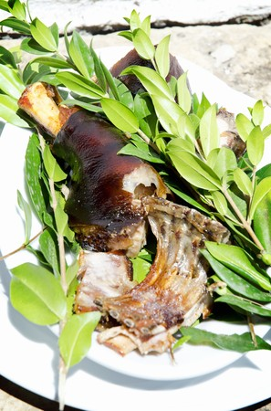 suckling pig: A piece of roast suckling pig on a plate with sprigs of fresh myrtle spurge (Sardinia)