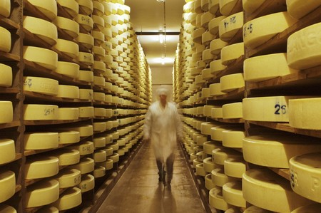 Alpine cheese in a storage room at a dairy in Walchsee, Tyrol, Austria LANG_EVOIMAGES