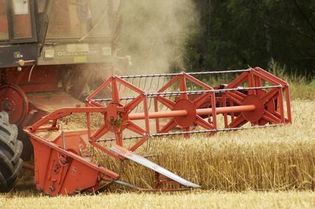 wheatfield: A combine harvester in a wheat field (wine growing region, Austria)