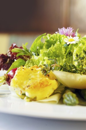rabi: Mixed leaf salad with kohlrabi, garden herbs, asparagus tips, radishes and potato and sheeps cheese fritters (Austria) LANG_EVOIMAGES