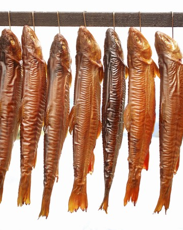 arctic waters: Smoked Arctic char from the Ausseerland region (Styria, Austria)