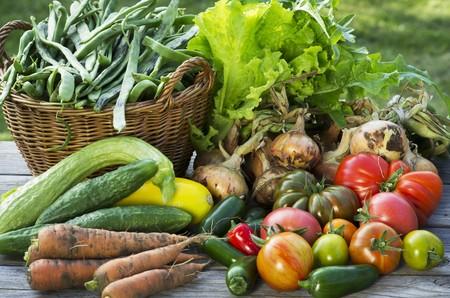 cocozelle: A harvest arrangement of garden vegetables on a wooden table LANG_EVOIMAGES