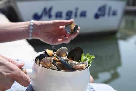 vino: Conchiglie al vino bianco (mussels in white wine, Italy)