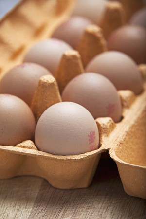 brownness: Eggs in an egg box