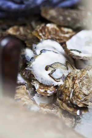 leftover: Leftover oyster shells (close-up)