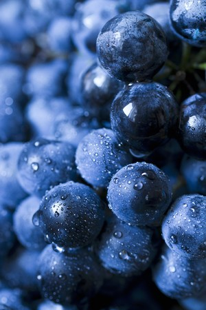 bluish: Freshly washed red grapes, close-up