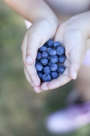 Hands holding blueberries LANG_EVOIMAGES