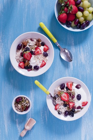 well made: Muesli with yoghurt and berries (seen from above) LANG_EVOIMAGES