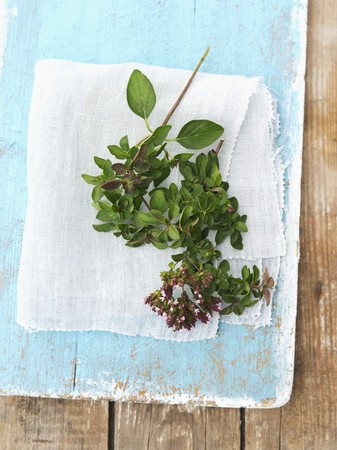 wild marjoram: Fresh oregano on a blue wooden board