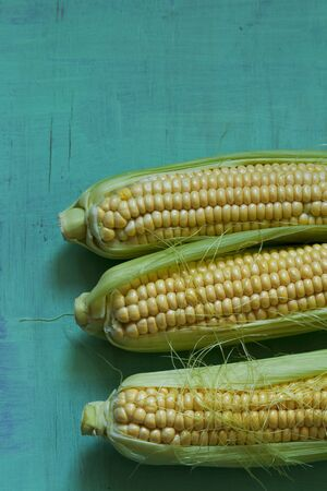 zea: Three corn cobs (seen above)