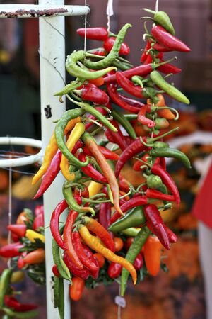 festoons: A garland of colourful chilli peppers LANG_EVOIMAGES