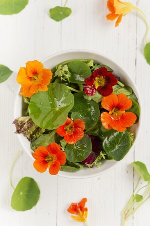water cress: A colourful salad with water cress flowers and leaves
