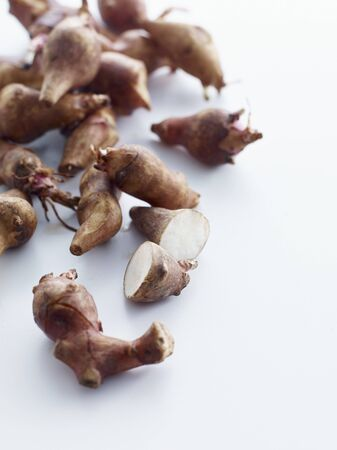 jerusalem artichoke: Jerusalem Artichoke; Sunchoke; On White Background LANG_EVOIMAGES